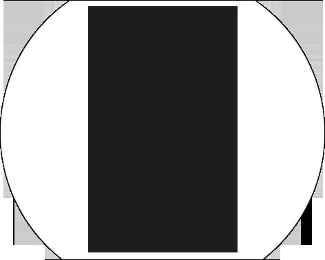 Guitare Albarella